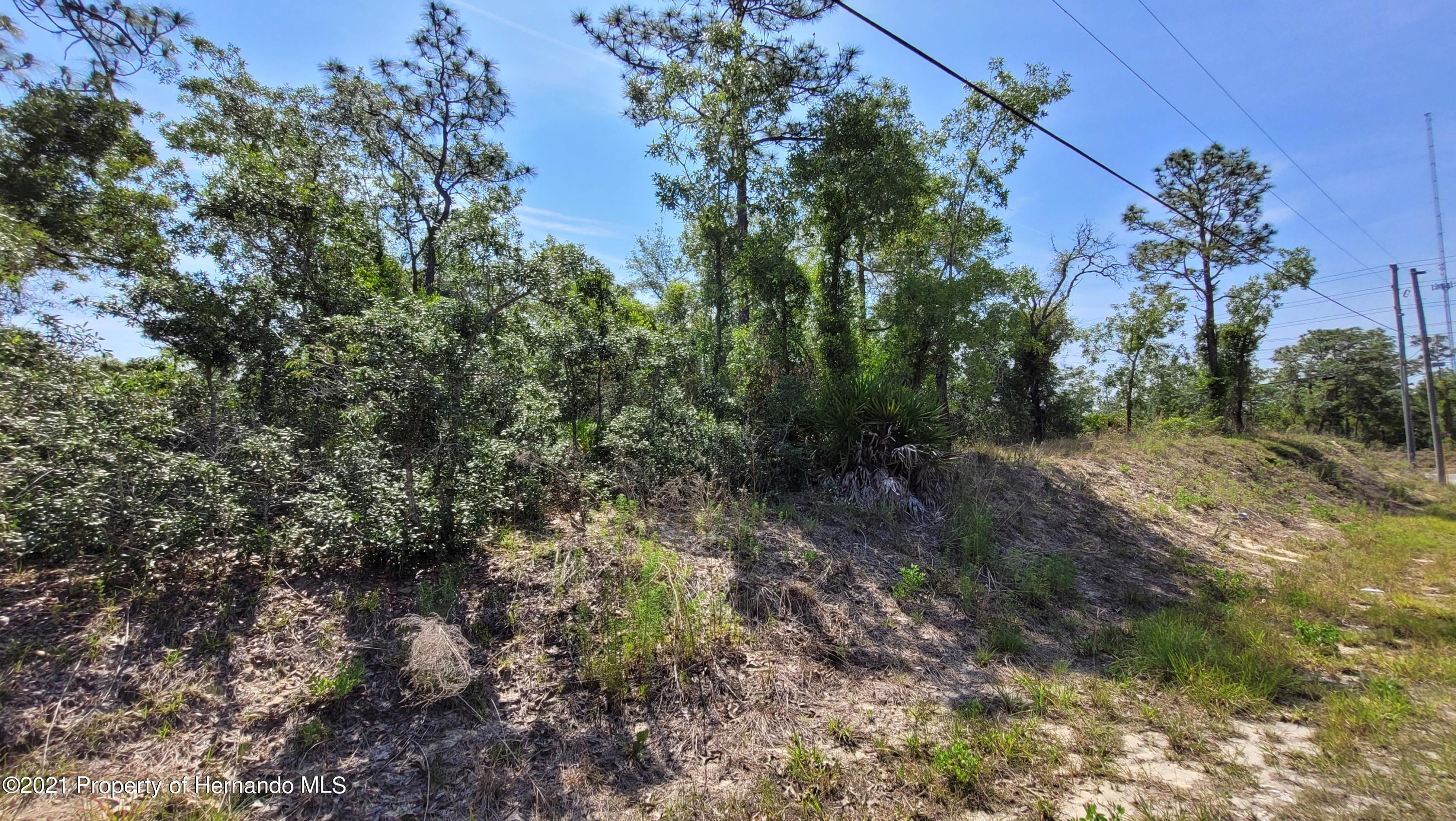Listing photo id 4 for 0 Jackdaw Road
