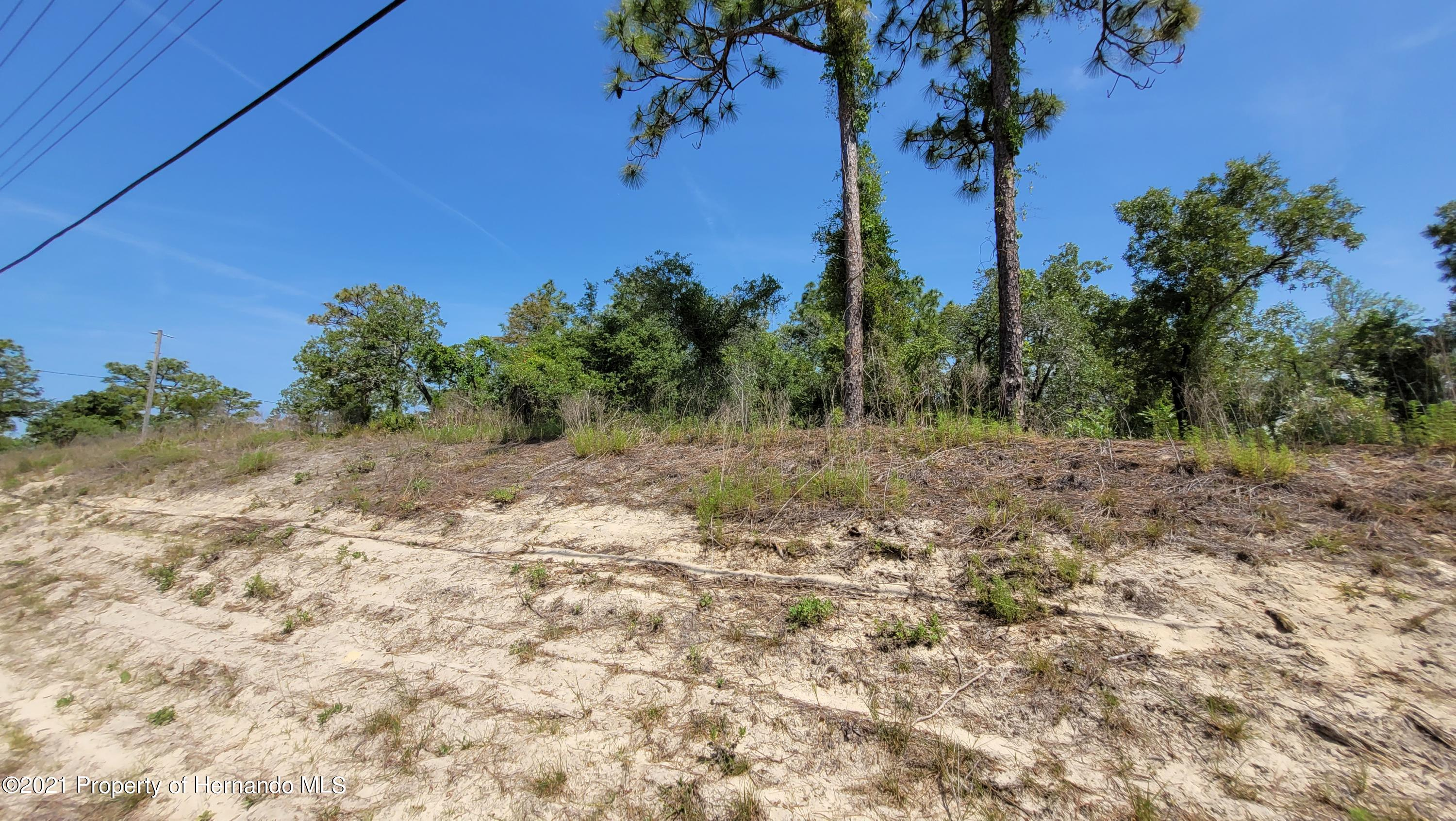 Listing photo id 9 for 0 Jackdaw Road