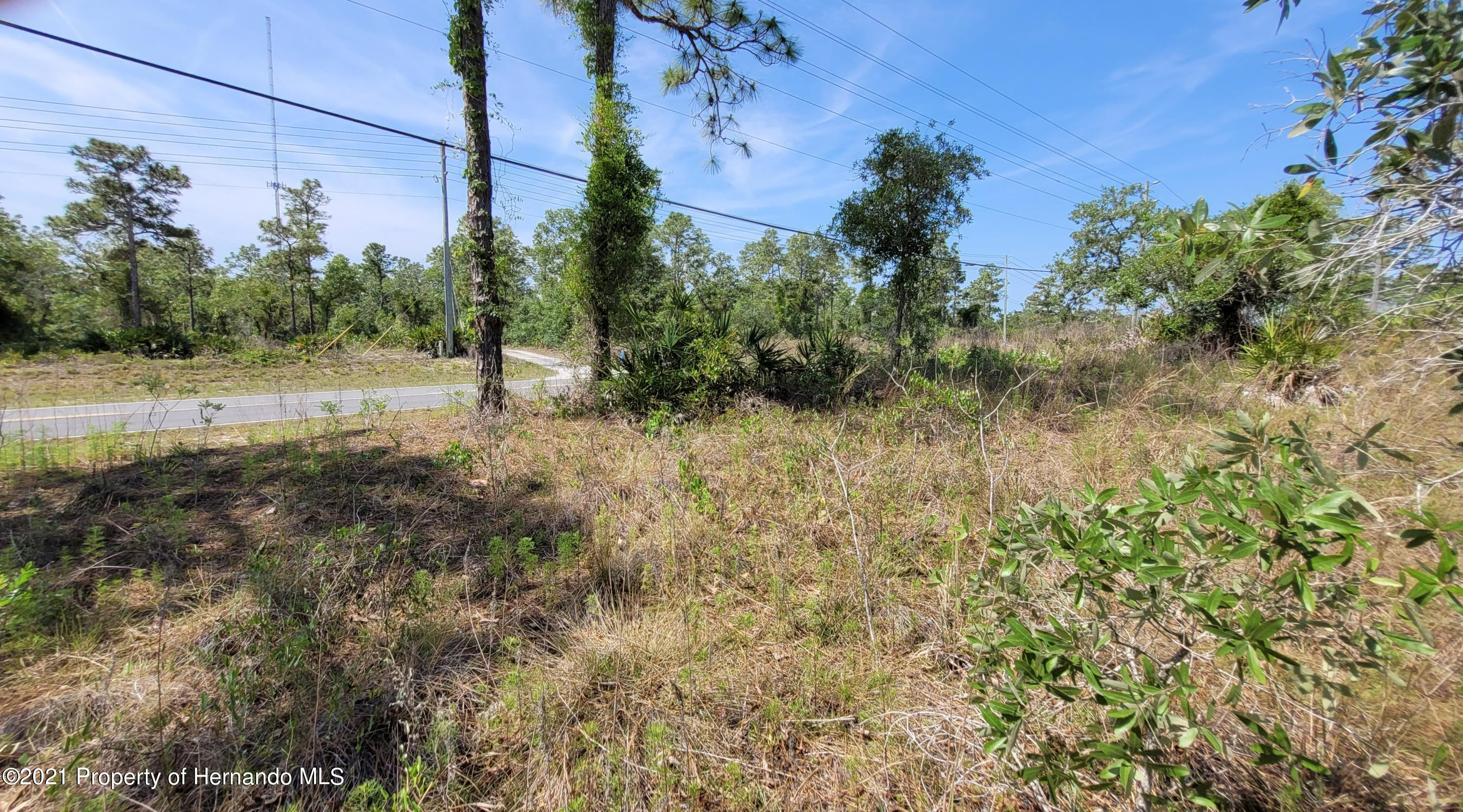 Listing photo id 10 for 0 Jackdaw Road