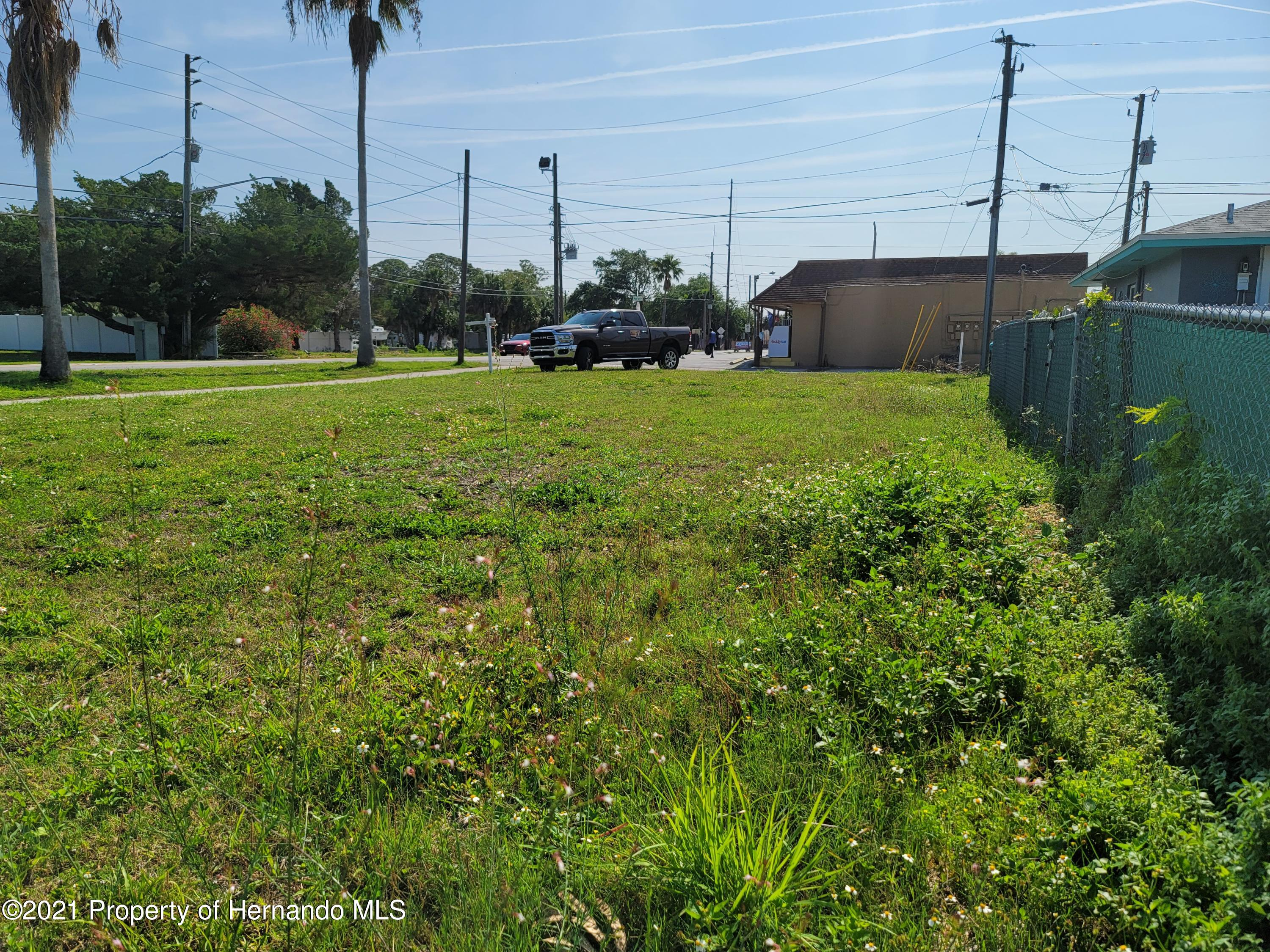 Listing photo id 5 for 0 Muriel Avenue