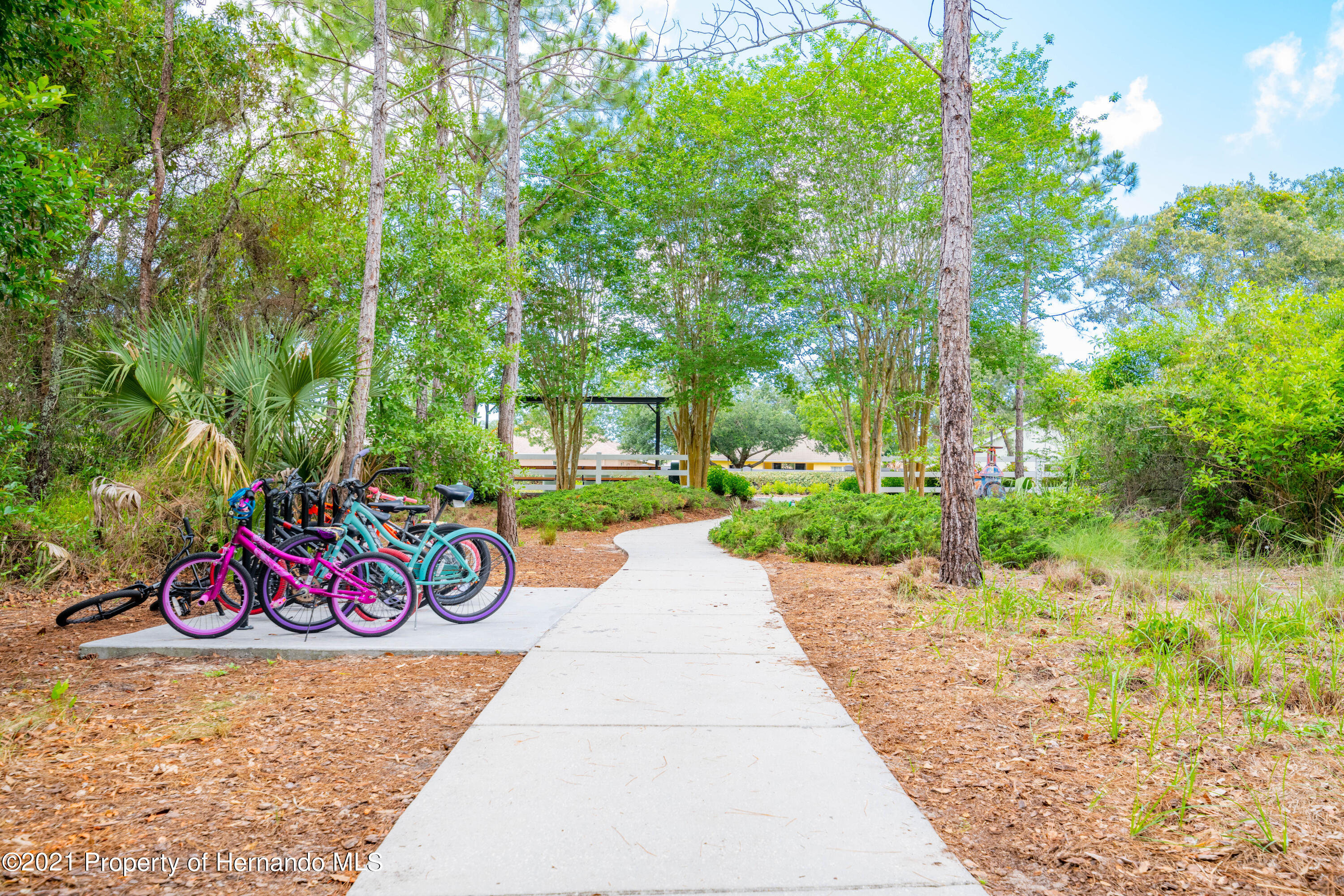 Listing photo id 49 for 3457 Autumn Amber Drive