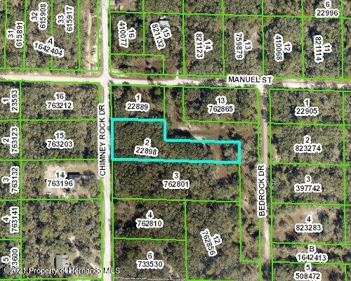 Details for 0 Chimney Rock Drive, Ridge Manor, FL 33597