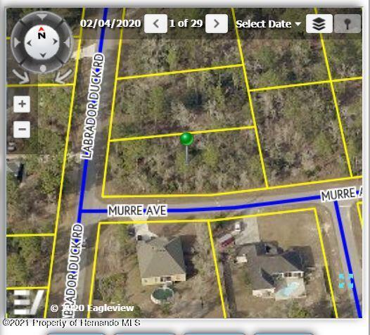 Listing Details for 11461 Murre Avenue, Brooksville, FL 34614