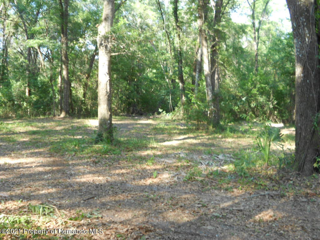 Listing photo id 28 for 16197 Appennine Drive