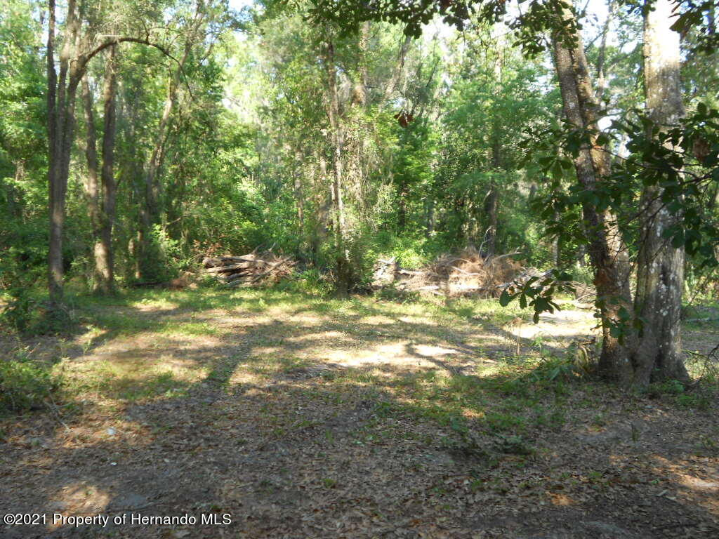 Listing photo id 29 for 16197 Appennine Drive