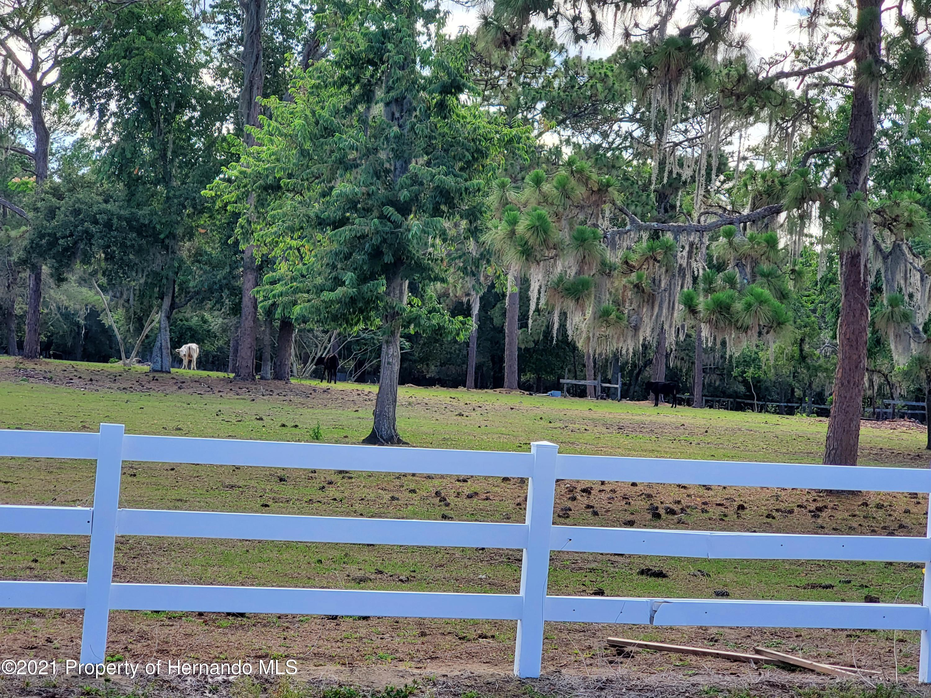 Listing photo id 4 for 4303 Gloucester