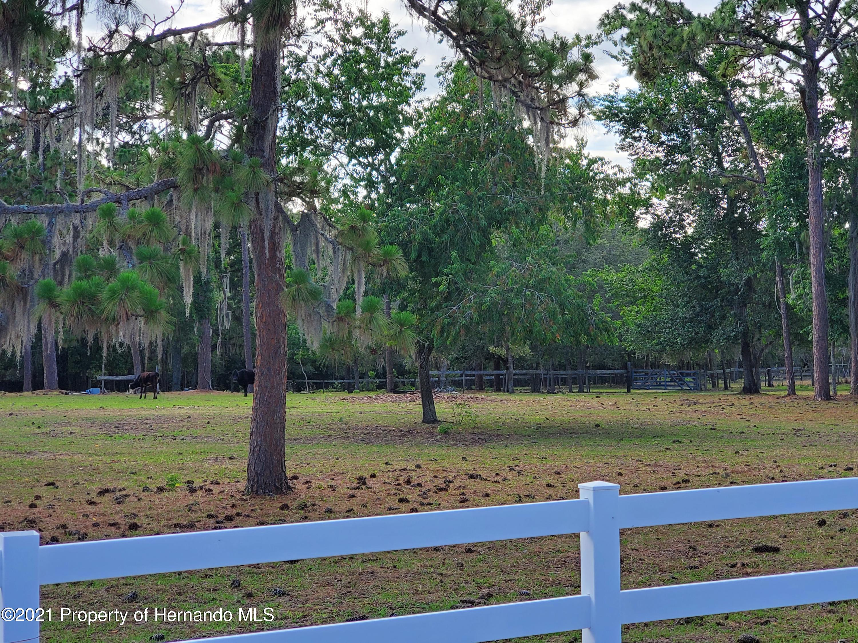 Listing photo id 5 for 4303 Gloucester