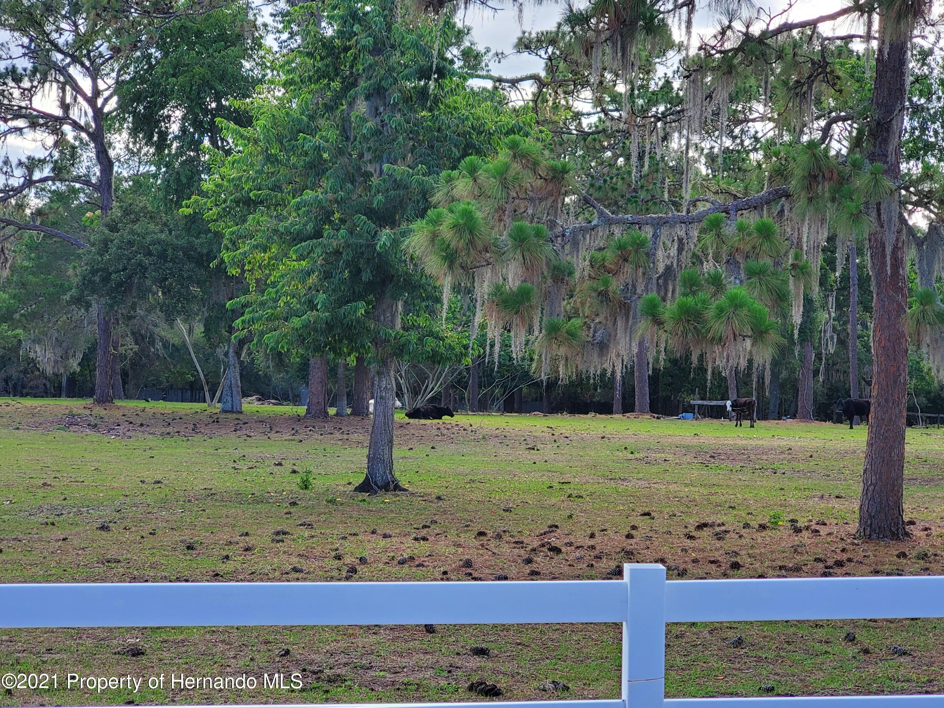 Listing photo id 6 for 4303 Gloucester