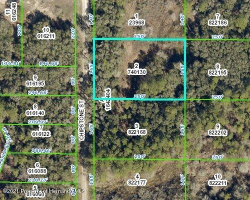 Listing Details for 0 Chipstone Street, Ridge Manor, FL 33523