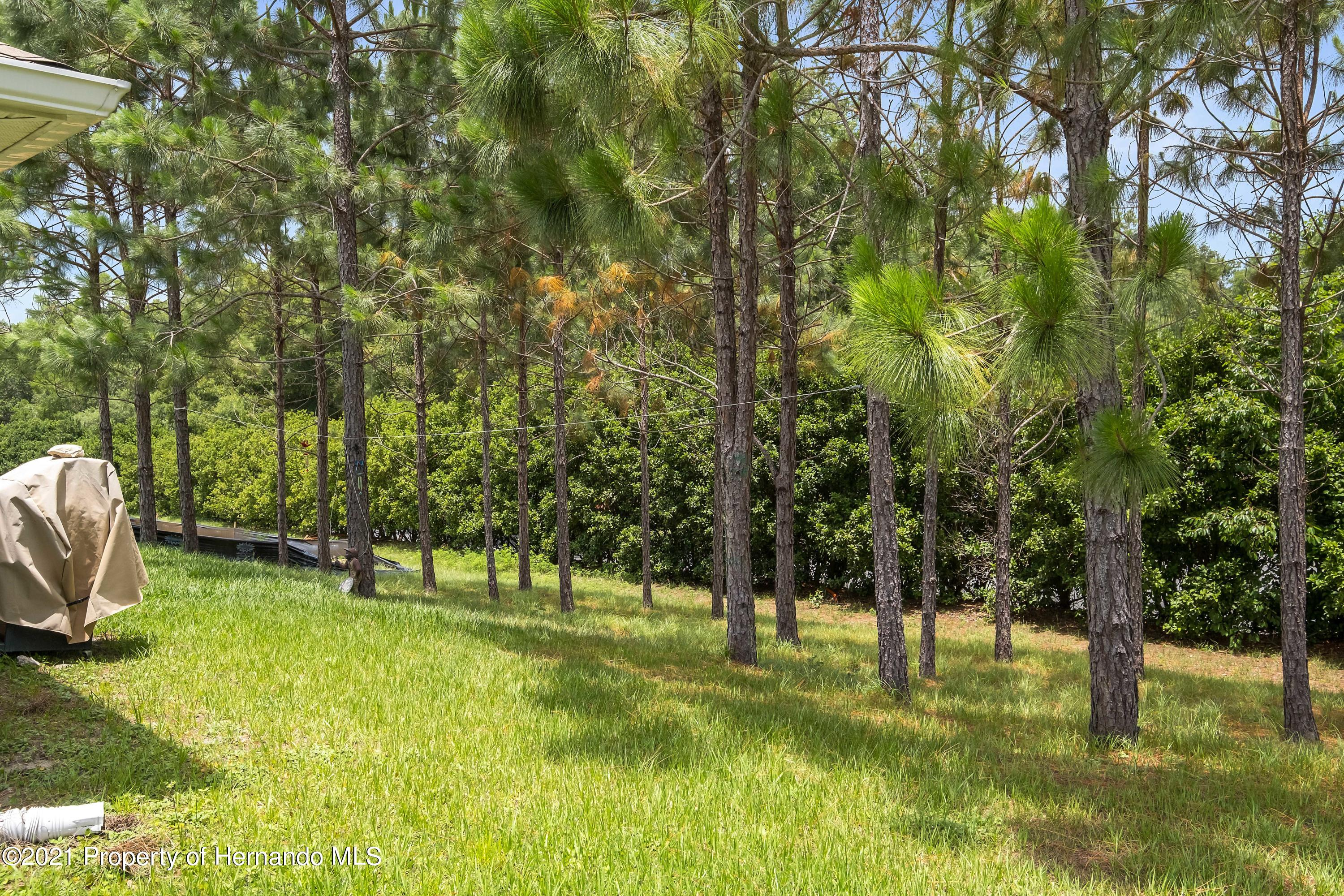 Listing photo id 26 for 3560 N Burroughs Path