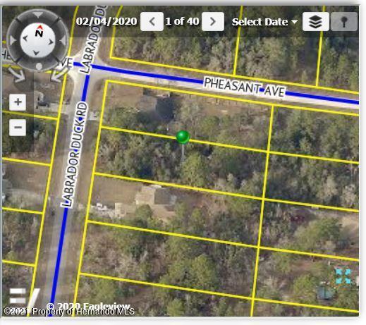 Listing Details for 12044 Labrador Duck Road, Brooksville, FL 34614