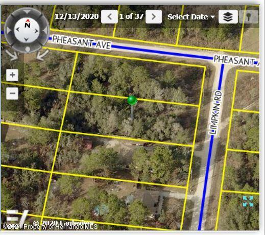 Listing Details for 12045 Limpkin Road, Brooksville, FL 34614