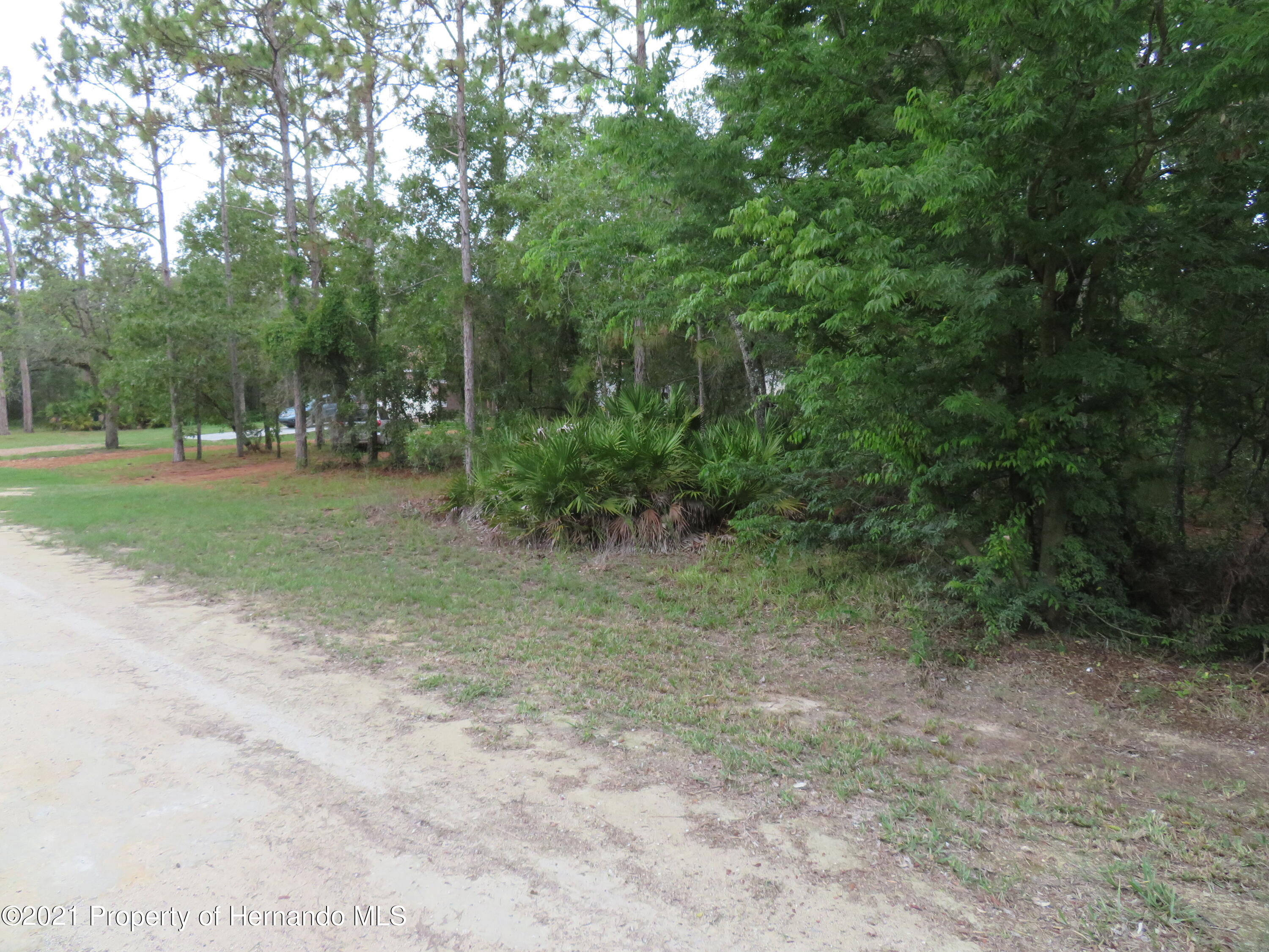 Listing photo id 2 for Lot 13 Magnolia Warbler Road
