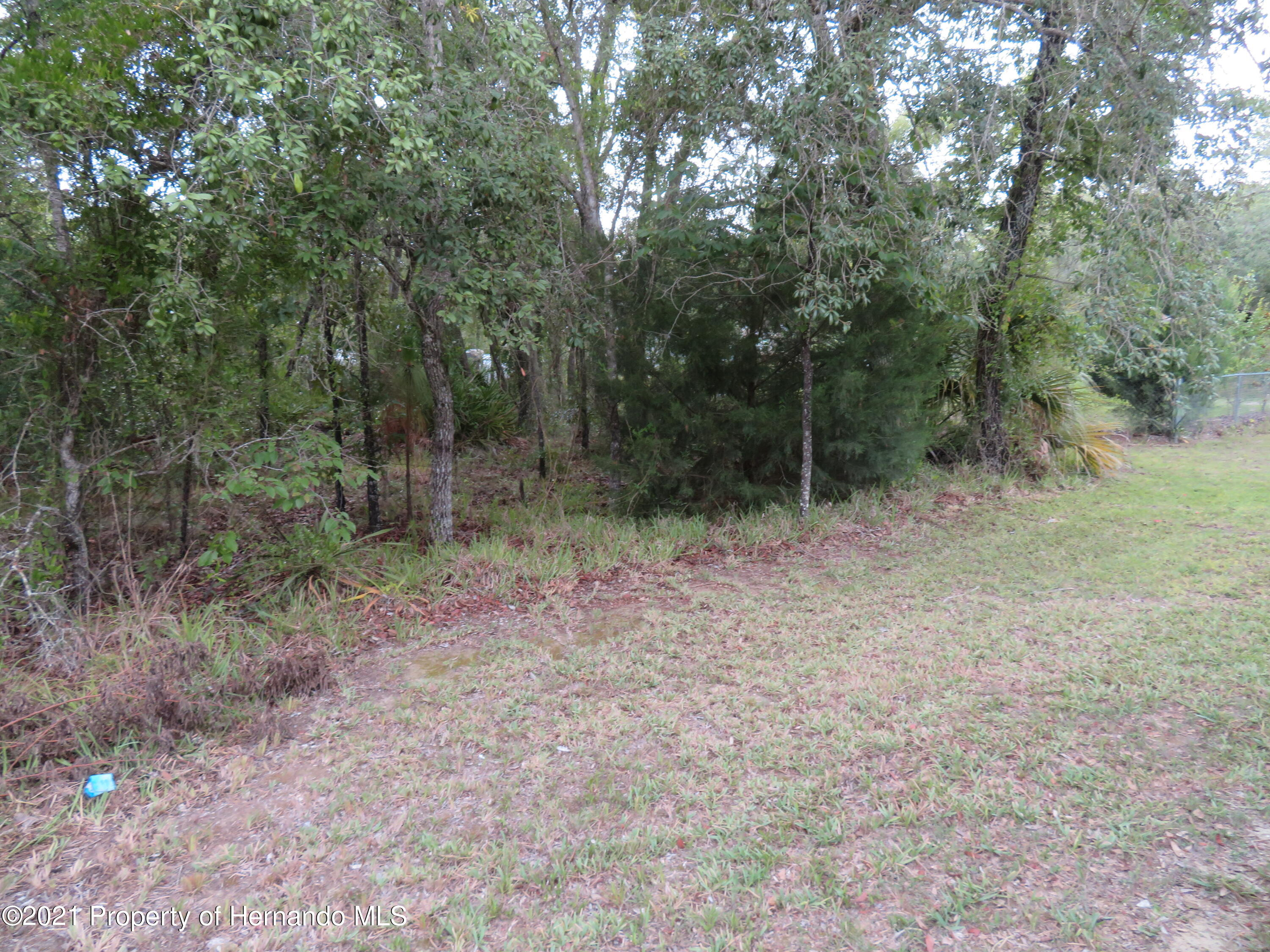 Listing photo id 3 for Lot 13 Magnolia Warbler Road