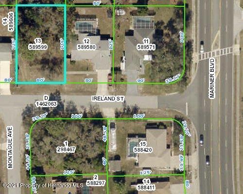 Listing Details for 0 Ireland Street, Spring Hill, FL 34608