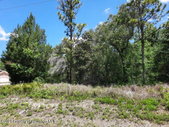 Details for 0 Hemlock Warbler Road, Weeki Wachee, FL 34614