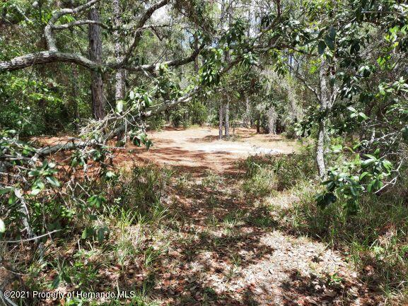 Details for 0 Toucan Trail, Spring Hill, FL 34606