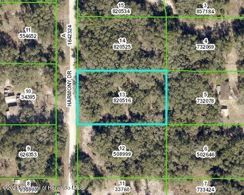 Listing Details for 0000 Harmony Drive, Ridge Manor, FL 33523
