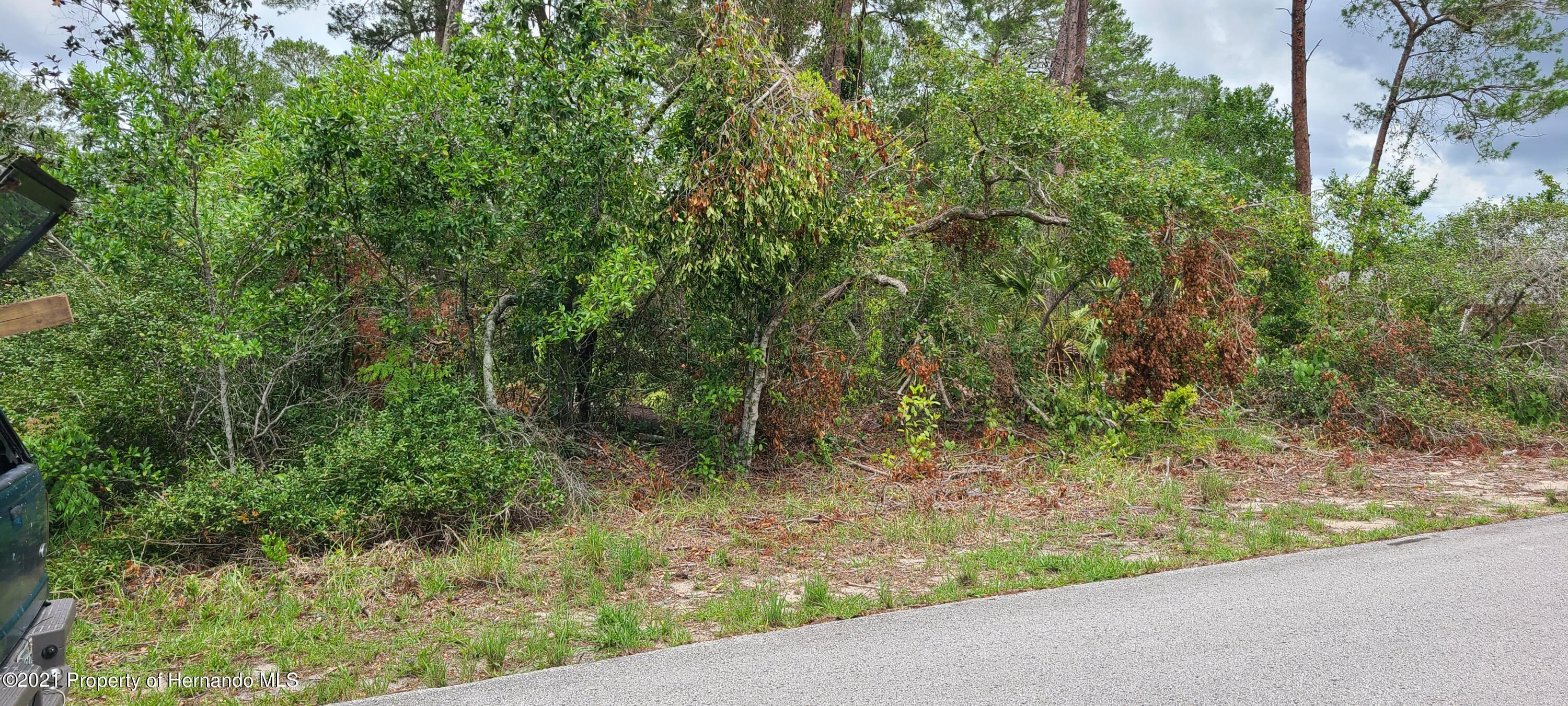Listing Details for 0 Swiss Road, Spring Hill, FL 34606