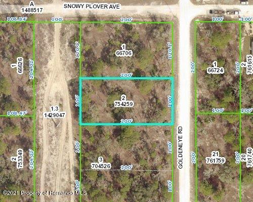 Details for 15057 Goldeneye Road, Weeki Wachee, FL 34614