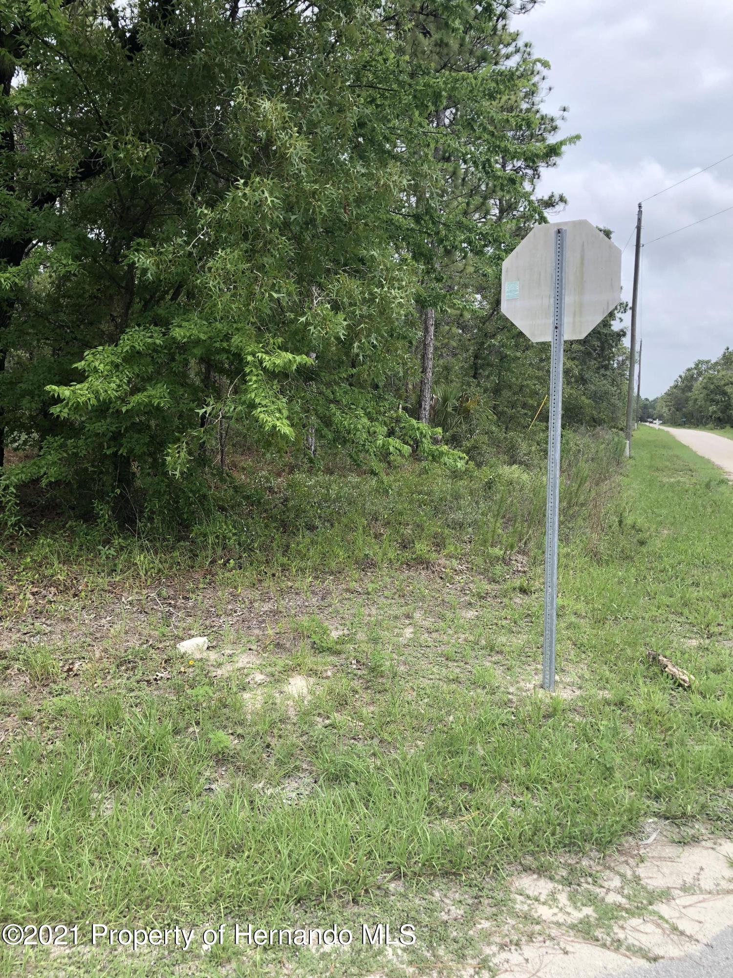 Listing photo id 4 for 0 Yellow Hammer Road