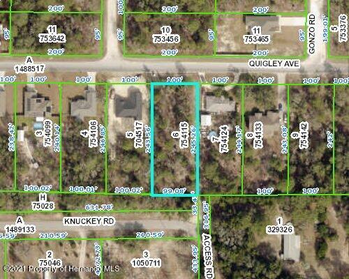 Details for 0 Quigley Avenue, Weeki Wachee, FL 34614