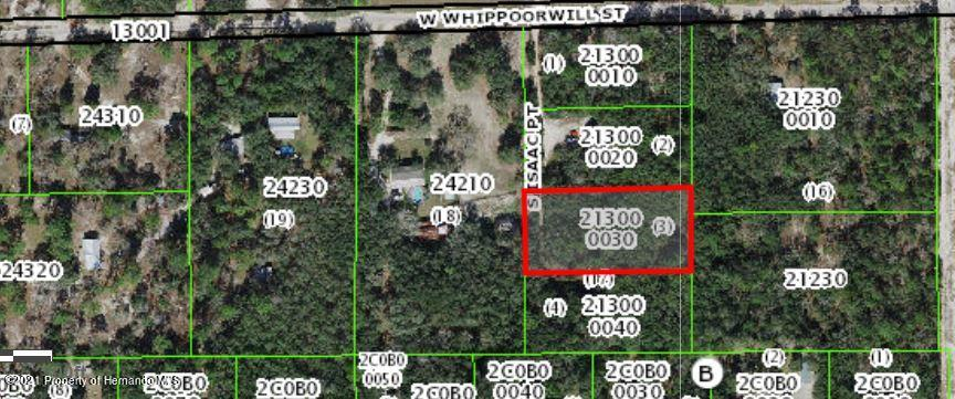 Listing Details for 4703 Isaac Point, Lecanto, FL 34461