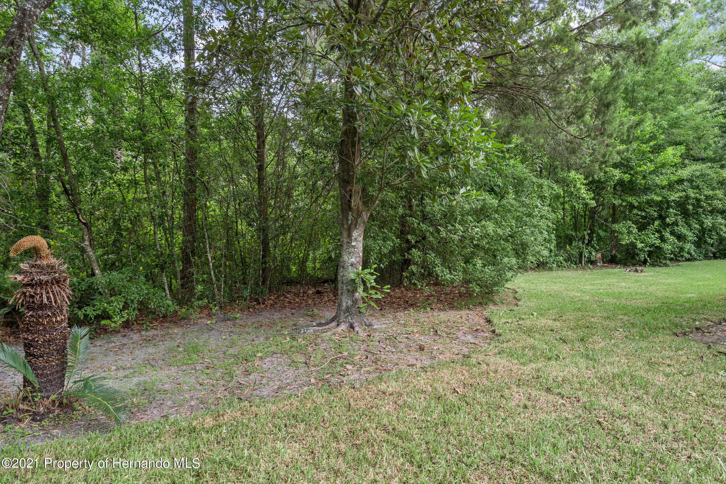 Listing photo id 39 for 36 Redbay Court