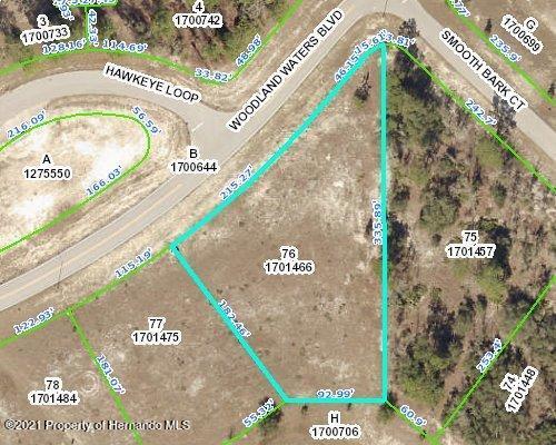 Details for 000 Woodland Waters Boulevard, Weeki Wachee, FL 34613