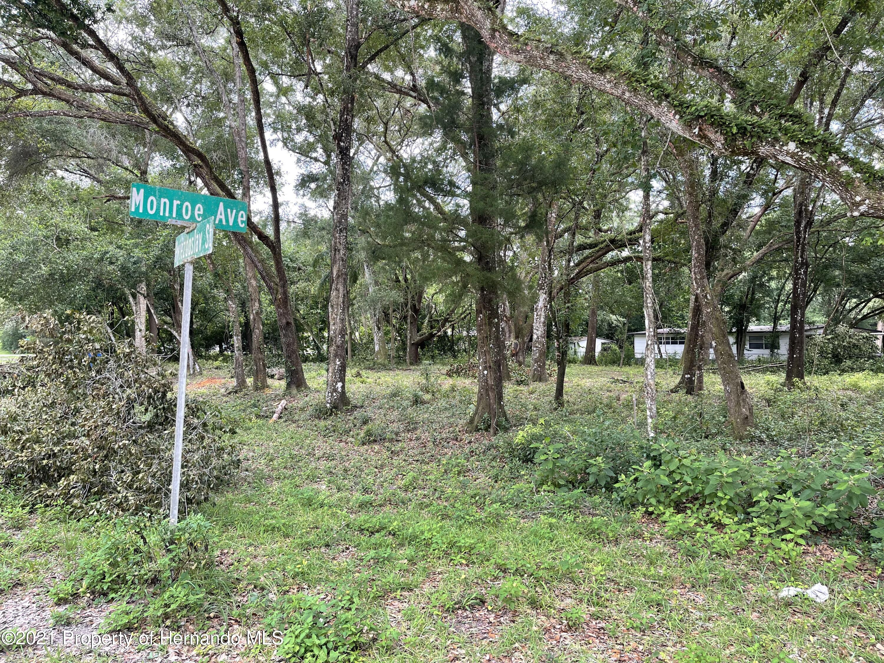 Details for 0 Monroe Ave Lot 11 & 12, Masaryktown, FL 34604