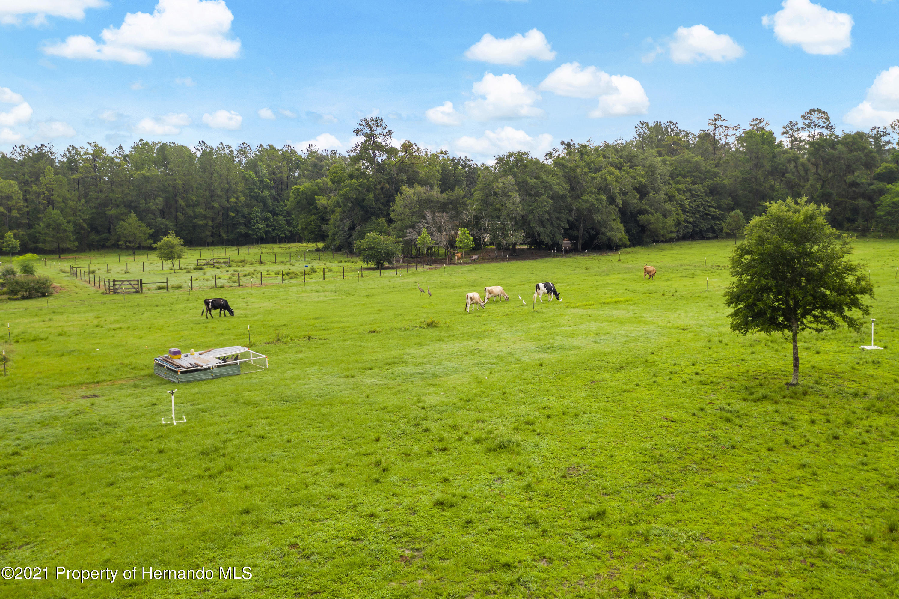 Listing photo id 60 for 2343 Gold Hill Road