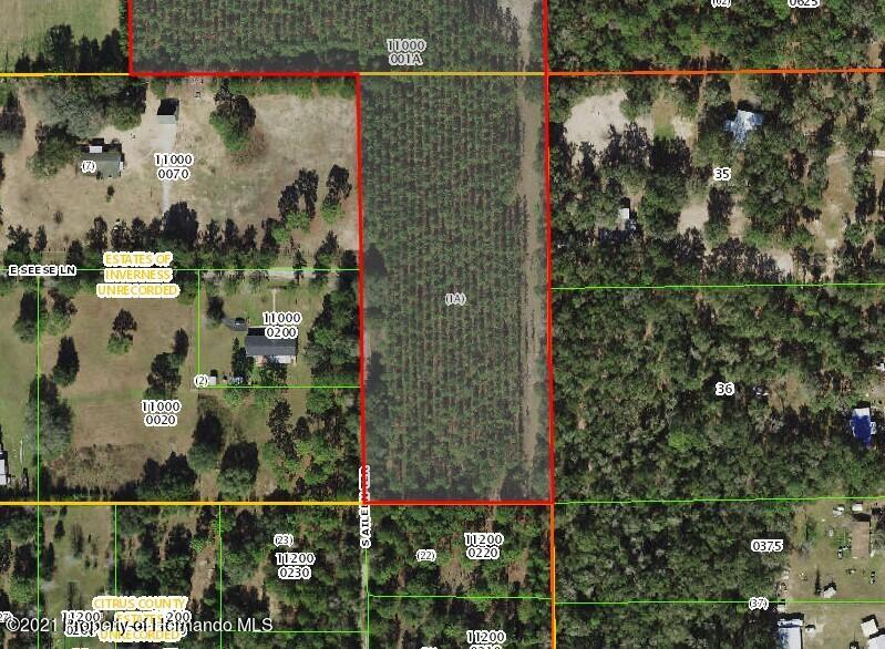 Details for 11593 S Aileen Terrace, Floral City, FL 34436