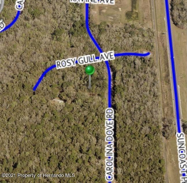 Listing photo id 4 for Lot 3 Carolina Dove Road