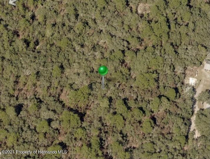 Listing photo id 5 for Lot 35 Trouble Creek Lane
