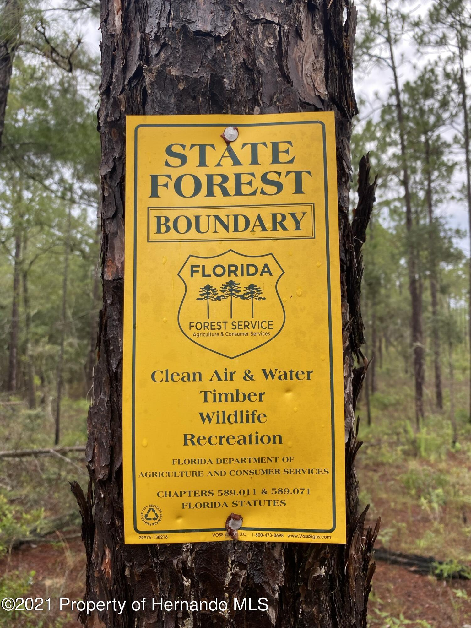 Details for 0 Spirit Woods Trail, Brooksville, FL 34601