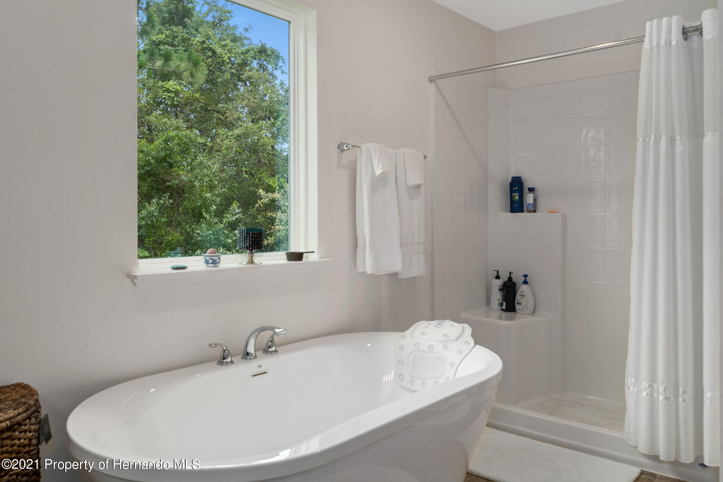 Listing photo id 43 for 16124 Cave Swallow Road