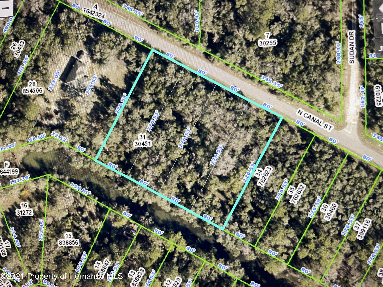 Listing Details for 00 N Canal Street, Webster, FL 33597