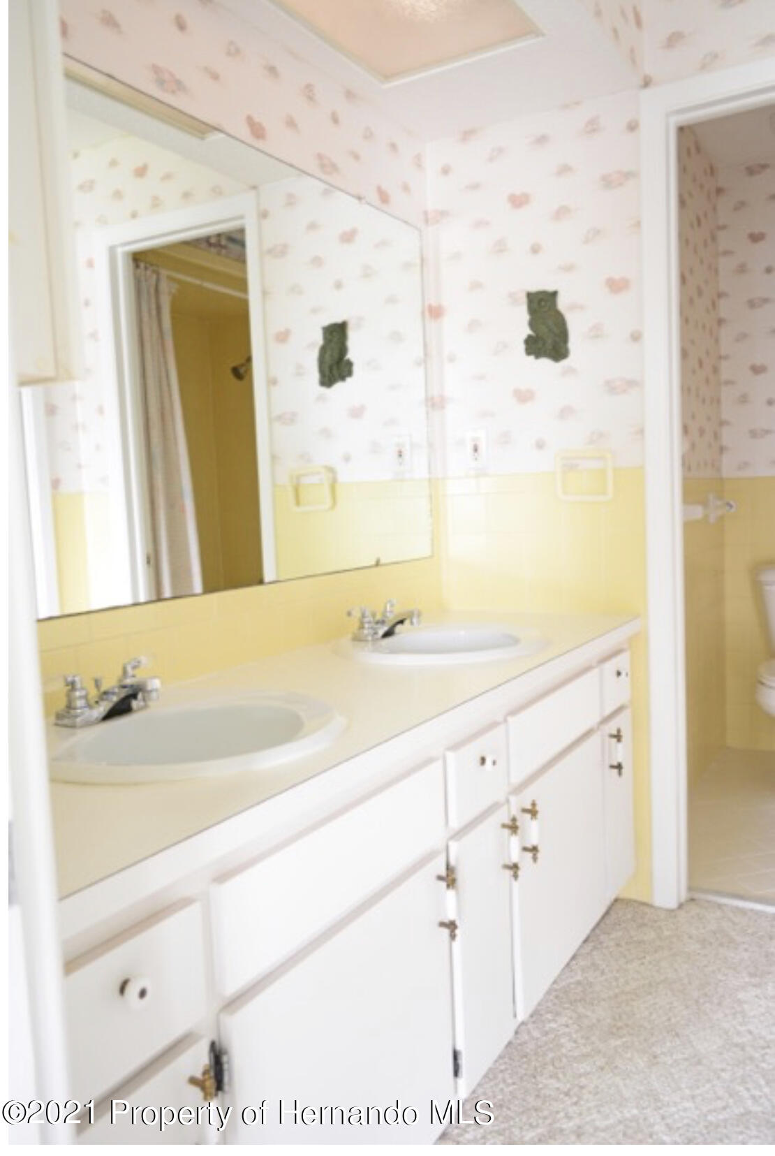 Listing photo id 38 for 11517 W Sandpiper Court