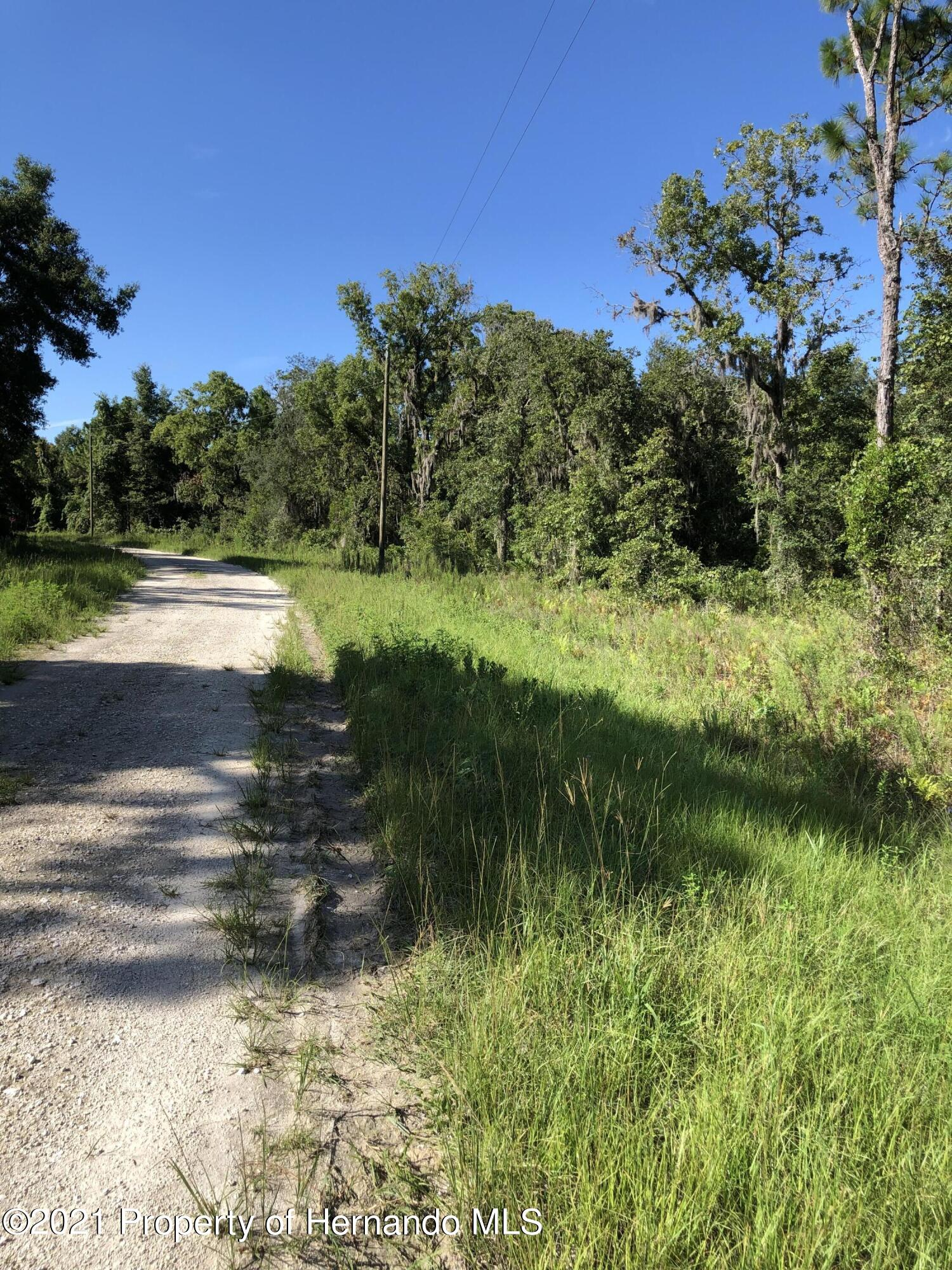 Listing photo id 4 for 0 Crider Road