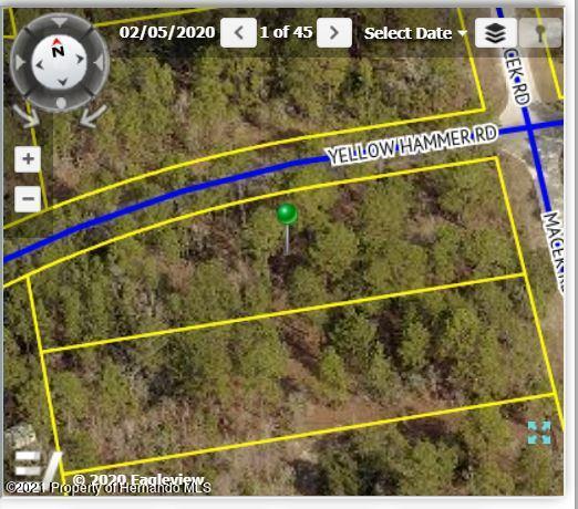 Details for 18123 Macek Road, Brooksville, FL 34614