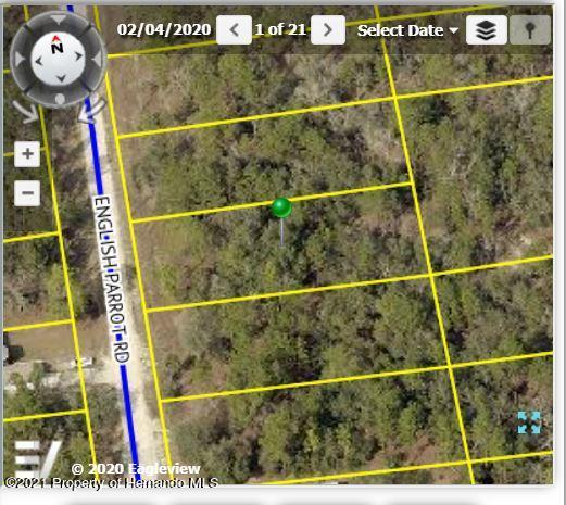 Listing Details for 13472 English Parrot Avenue, Brooksville, FL 34614