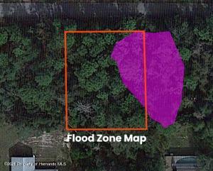 Flood Zone Sat - Copy