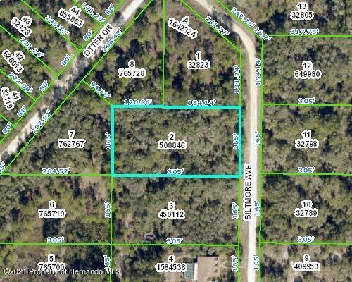Listing Details for 000 Biltmore Avenue, Webster, FL 33597