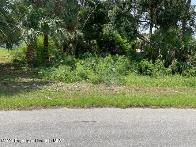 Details for 0 Pine Dale Court, Hernando Beach, FL 34607