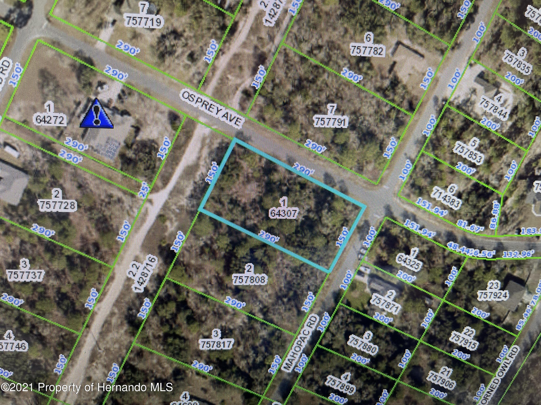 Listing Details for 0 Osprey Avenue, Weeki Wachee, FL 34614