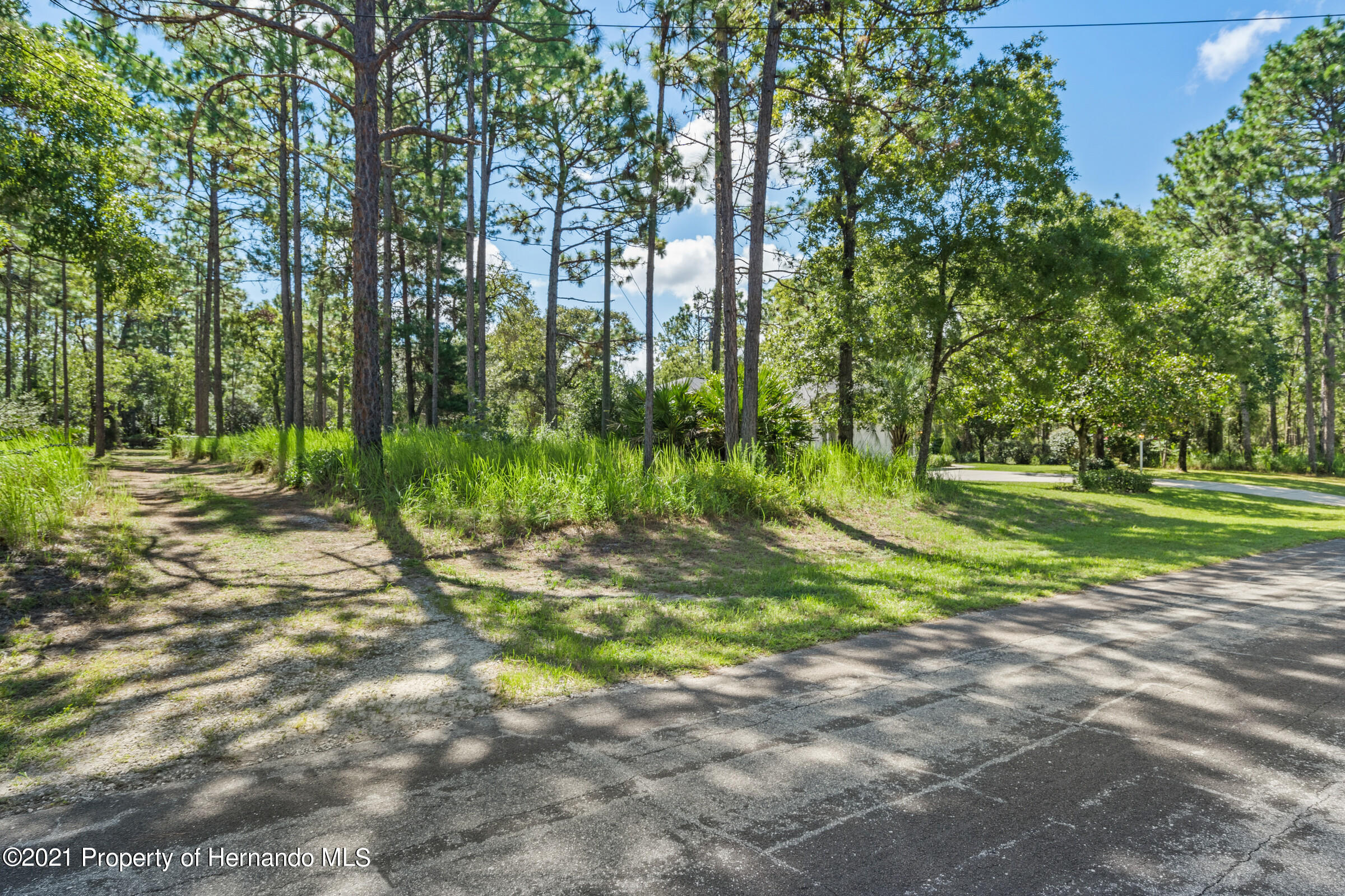 Listing photo id 6 for 4985 N Pink Poppy Drive
