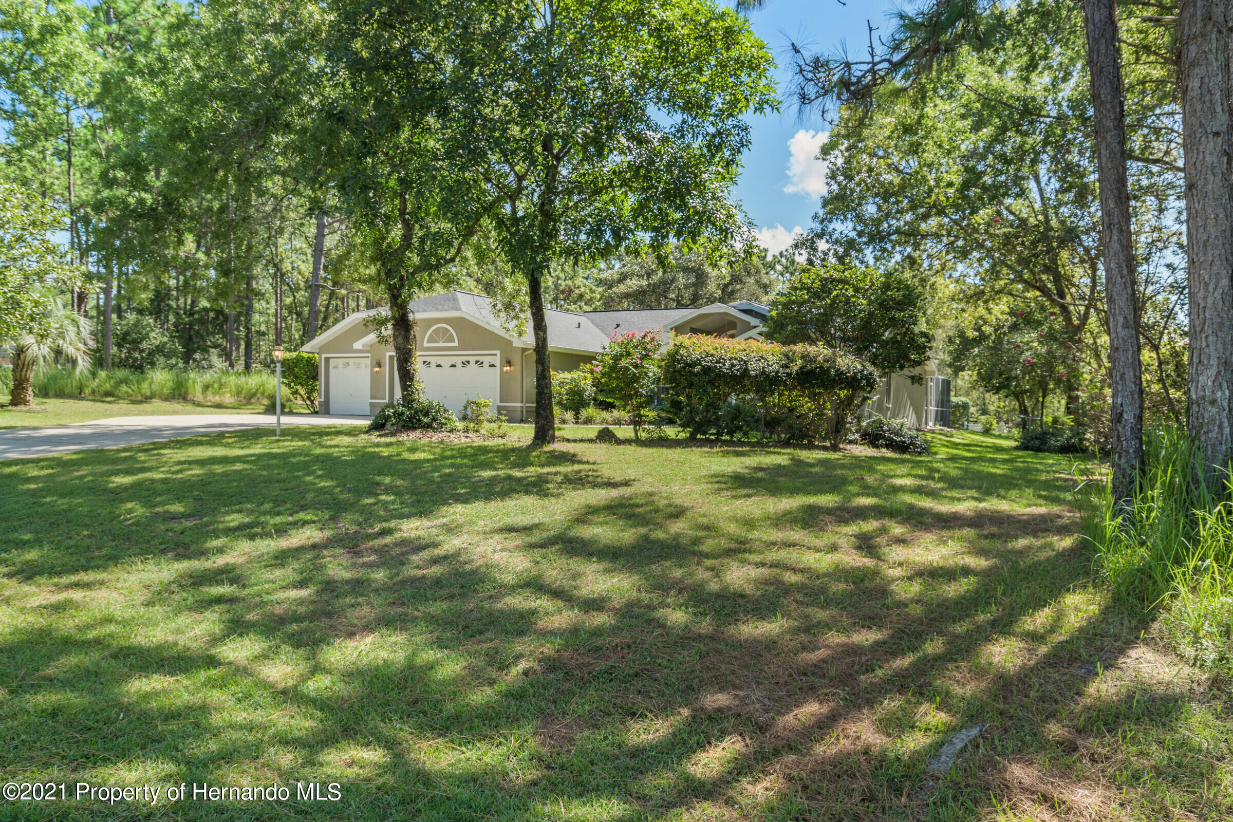 Listing photo id 4 for 4985 N Pink Poppy Drive