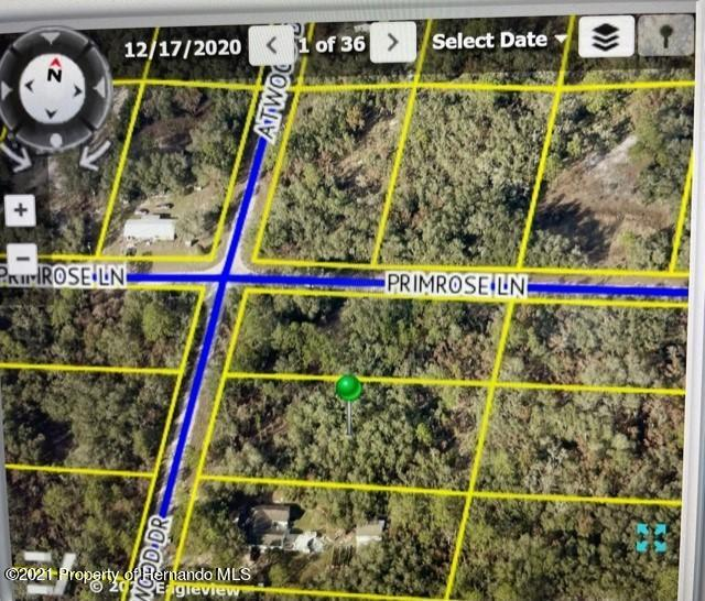 Listing Details for 0 Atwood Road, Webster, FL 33597