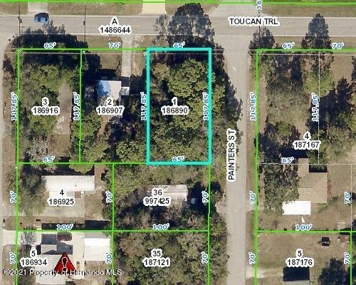 Listing Details for 0 Painters Street, Spring Hill, FL 34606