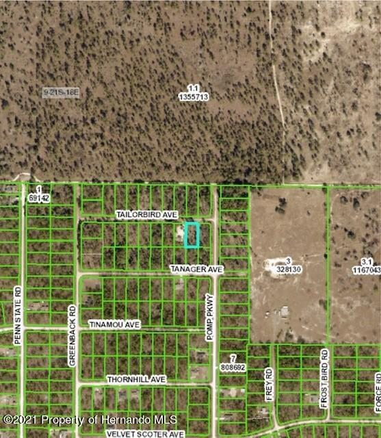 Listing photo id 3 for Lot 9 Tailorbird Avenue